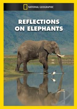 Reflections on Elephants DVD Cover Art