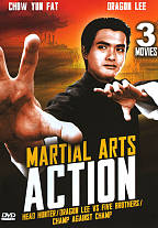 Martial Arts Action DVD Cover Art
