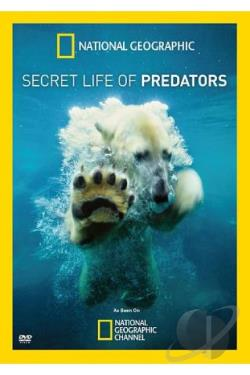 National Geographic: Secret Life of Predators DVD Cover Art