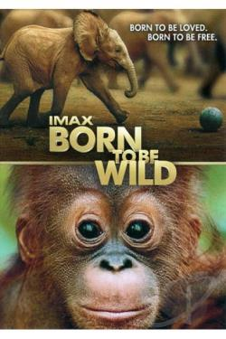 Born to Be Wild DVD Cover Art