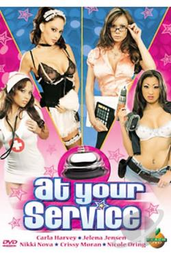 At Your Service DVD Cover Art