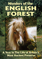 English Ponies of the New Forest DVD Cover Art