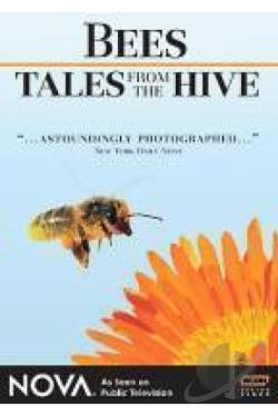 Bees - Tales From the Hive DVD Cover Art