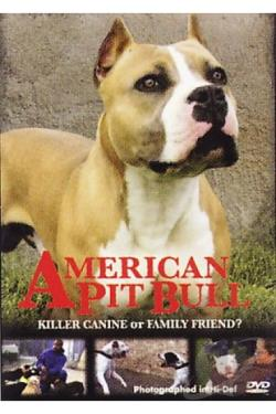 american pit bull dvd movie
