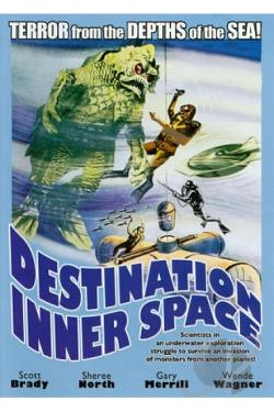 Destination Inner Space DVD Cover Art