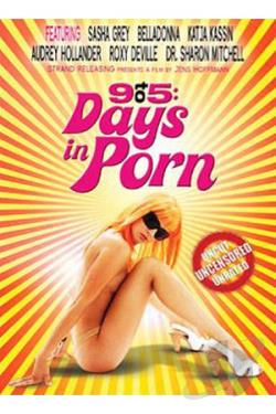 9 To 5: Days in Porn DVD Cover Art