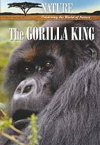 Nature: The Gorilla King DVD Cover Art