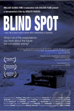Blind Spot DVD Cover Art