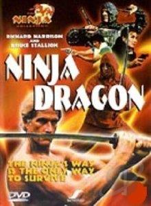 Ninja Dragon DVD Cover Art