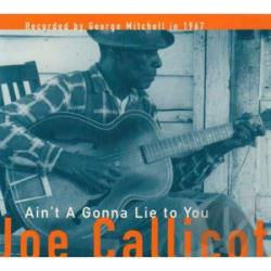 Callicott, Joe - Ain't A Gonna Lie To You CD Cover Art