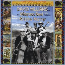 David Williams & Wildgrass - Crazy Kind CD Cover Art