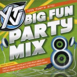YTV Big Fun Party Mix, Vol. 8 CD Cover Art
