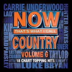 Now That's What I Call Country, Vol. 6 CD Cover Art