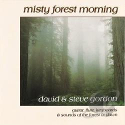David & Steve Gordon - Misty Forest Morning CD Cover Art