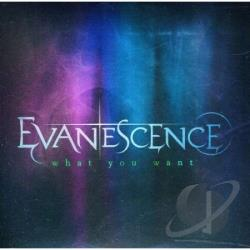 Evanescence - What You Want (2-Track) DS Cover Art