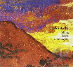 Tindersticks - Falling Down a Mountain CD Cover Art