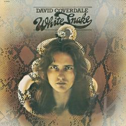 Coverdale, David / Whitesnake - Whitesnake CD Cover Art