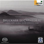 Baborak, Radek:dir / Czech Hor - Bruckner in Cathedral CD Cover Art