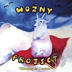 Wozny Project - Elevated in C-minor CD Cover Art
