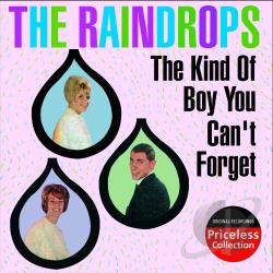 Raindrops - Kind of Boy You Can't Forget CD Cover Art