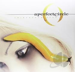 A Perfect Circle - Thirteenth Step LP Cover Art