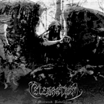 Celebratum - Mirrored Revelation CD Cover Art