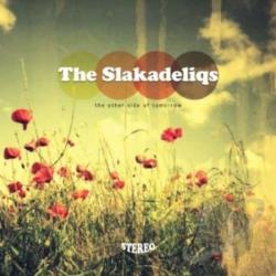 Slakadeliqs - Other Side Of Tomorrow CD Cover Art