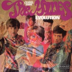 Hollies - Evolution CD Cover Art