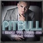 Pitbull - I Know You Want Me (Calle Ocho) DB Cover Art