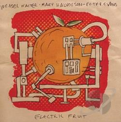 Evans, Peter / Halvorson, Mary / Walter, Weasel - Electric Fruit CD Cover Art