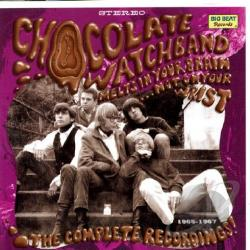 Chocolate Watchband - Melts in Your Brain Not on Your Wrist: The Complete Recordings 1965 to 1967 CD Cover Art