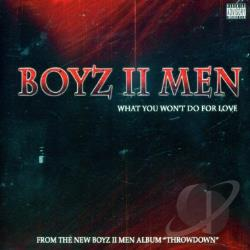 Boyz II Men - What You Won't Do For Love DS Cover Art