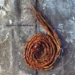 Nine Inch Nails - Further Down the Spiral CD Cover Art