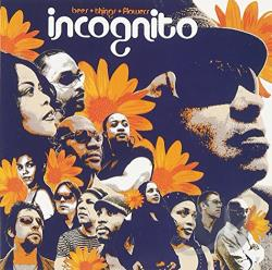 Incognito - Bees + Flowers + Things CD Cover Art