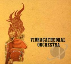 Vibracathedral Orchestra - Wisdom Thunderbolt CD Cover Art
