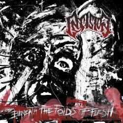 Insision - Beneath the Folds of Flesh CD Cover Art