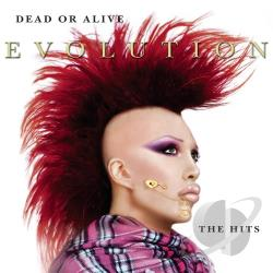 Dead Or Alive - Evolution: The Hits CD Cover Art
