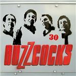 Buzzcocks - 30 CD Cover Art