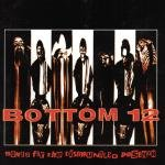 Bottom 12 - Songs For The Disgruntled Postman CD Cover Art