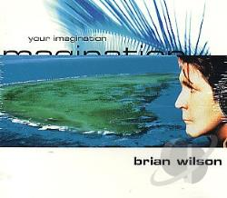 Wilson, Brian - Your Imagination/Your Imagination DS Cover Art