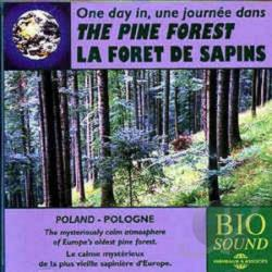 Sounds of Nature: Pine Forest CD Cover Art