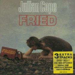 Cope, Julian - Fried CD Cover Art
