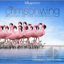 Cinematic Orchestra - Crimson Wing: Mystery of the Flamingos CD Cover Art