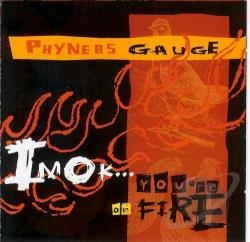 Phyneas Gauge - I'm Ok... You're On Fire CD Cover Art