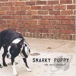 Snarky puppy vinyl