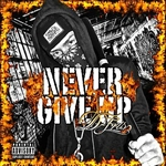 D-Fris - Never Give Up DB Cover Art
