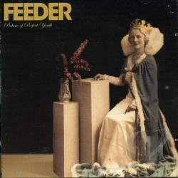Feeder - Picture of Perfect Youth CD Cover Art