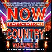 Now That's What I Call Country, Vol. 5 CD Cover Art