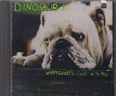 Dinosaur Jr. - Whatever's Cool with Me CD Cover Art