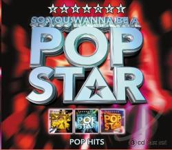 Karaoke - So You Wanna Be A Pop Star: Karaoke Pop Hits CD Cover Art